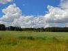 Karlslundsskogen, 2012-07-20.